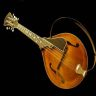 A beautiful mandolin that sounds and now plays great again whether amplified or acoustic.